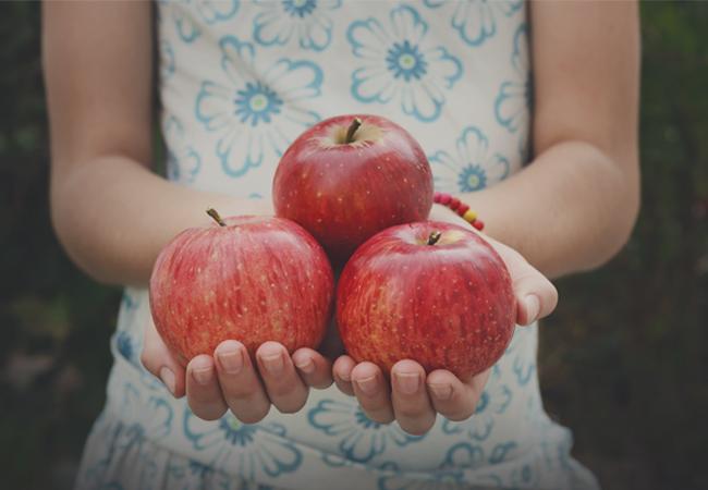 Alimentos saludables para vender en colegios